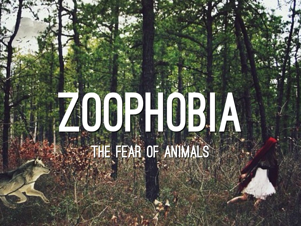Zoophobia: Causes & Cure